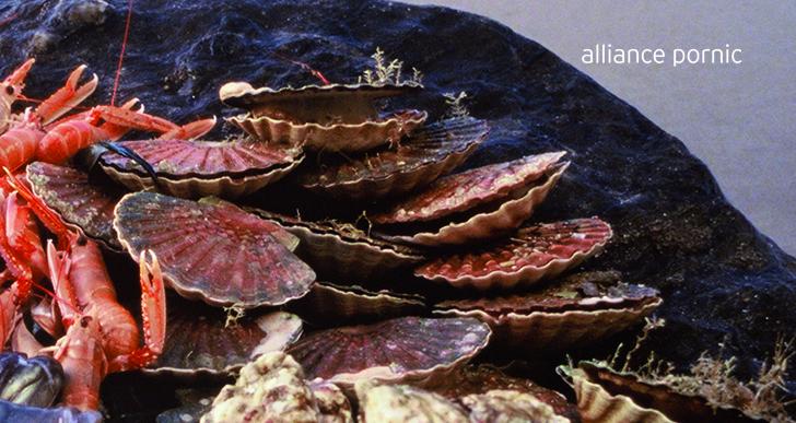 Brochettes St Jacques à la Citronnelle