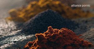 Plantes et épices : 7 propriétés à connaitre en ayurveda