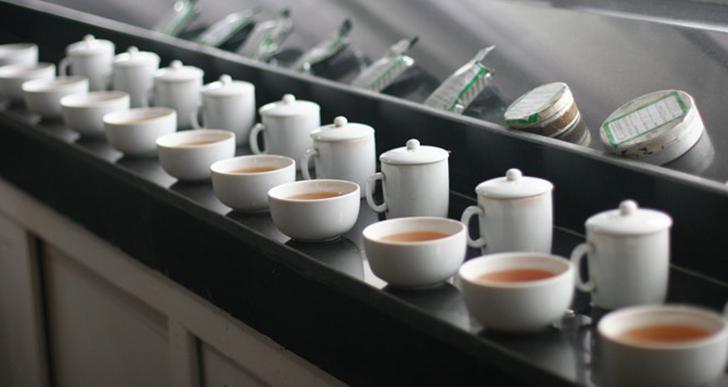 Les 10 Bienfaits du Thé