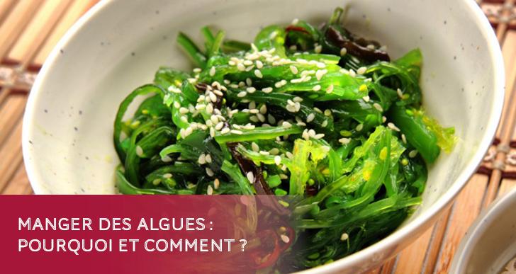 Manger des algues : pourquoi et comment ?