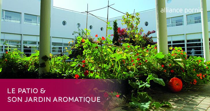 Le Patio et son jardin aromatique
